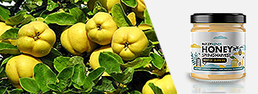 hint of quinces